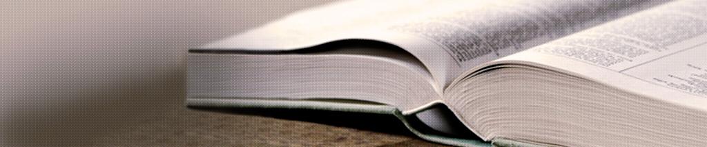 Internationale Publikationen von Dr. Peter Janetschek, AGAF, FEBGH